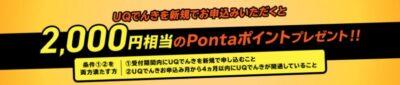 UQでんき キャンペーン